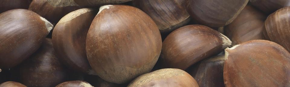 - Organic Chestnuts
