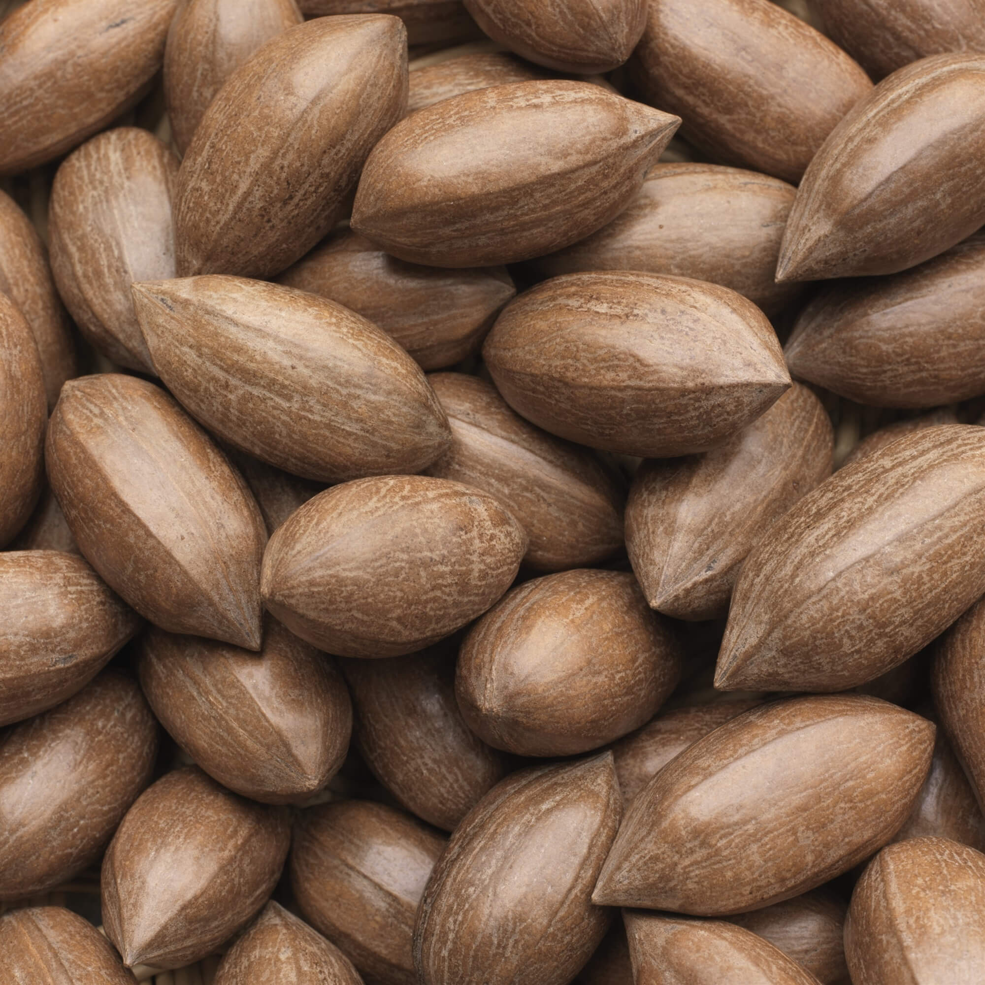 Pecan Nuts - A Pecan Nut is an edible nut encased in a brown shell with a tough outer green coat. They are mainly grown in Georgia, Texas, New Mexico and Oklahoma.