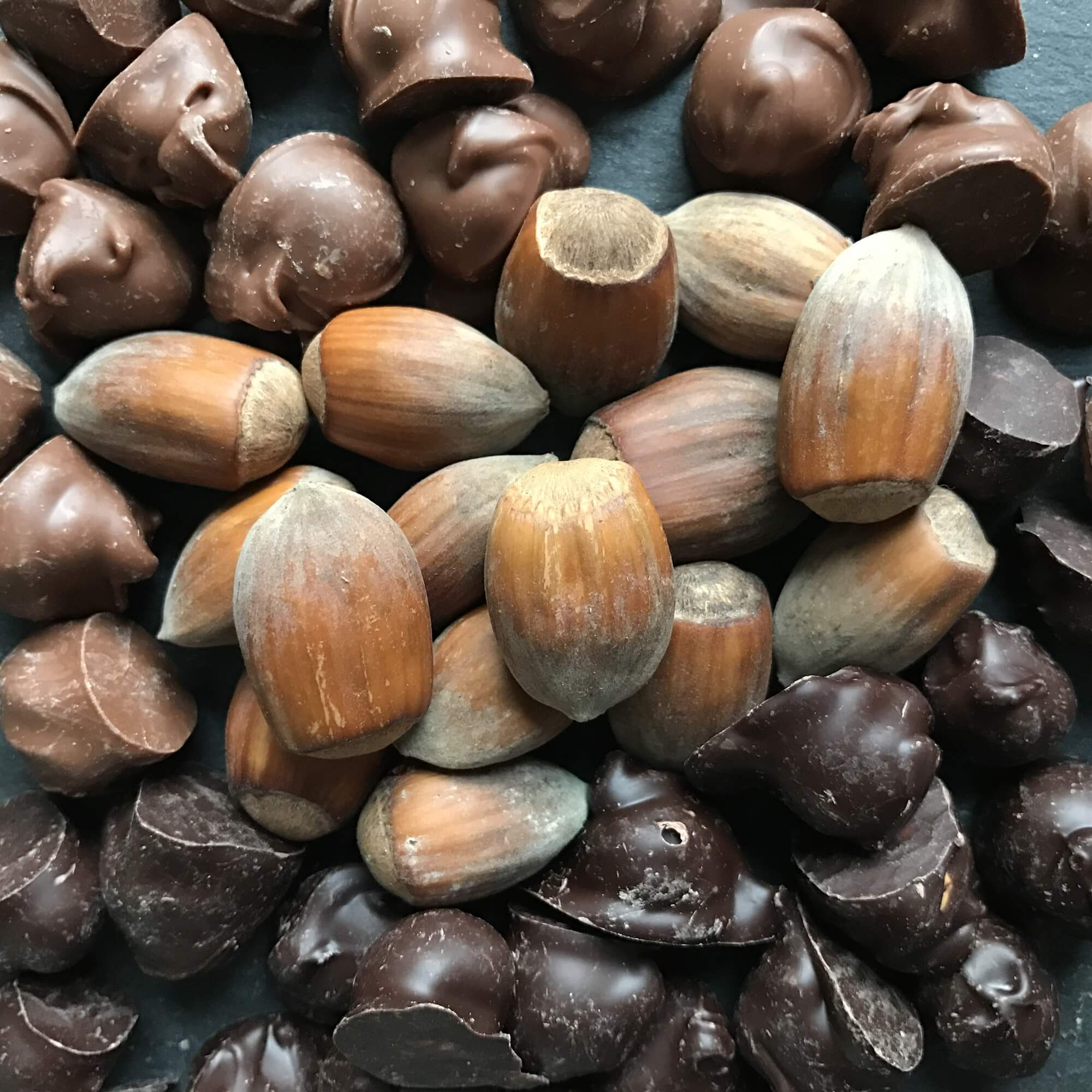 Plattinums Kentish Cobnuts - Plattinums Kentish Cobnuts are lightly caramalised and enrobed in a 45% Belgian milk chocolate or 70% Belgian dark chocolate