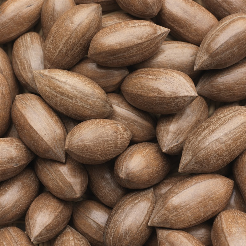 Farm Produced Pecan Nuts