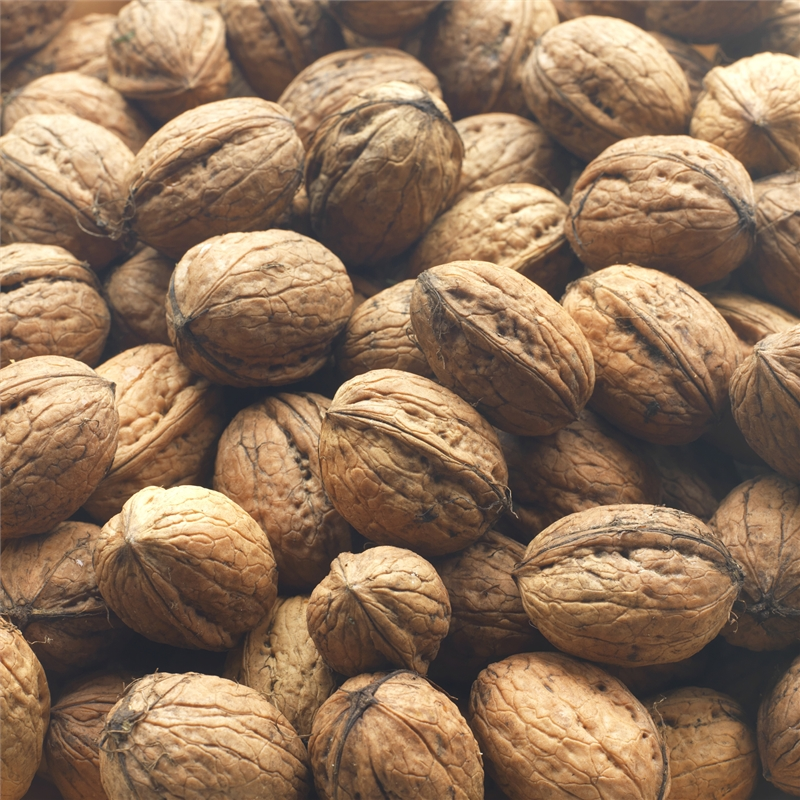 Wet Walnuts